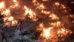 കോവിഡ് ദുരന്തം: മോഡി സര്ക്കാര് ജനങ്ങളുടെ കോടതിയില് വിചാരണ ചെയ്യപ്പെടും.